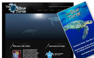The Blue Turtle Website and Business Cards